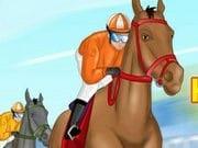 At Koşusu