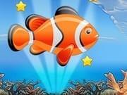 Balığın Özgürlüğü