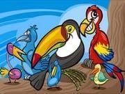 Egzotik Kuşlar Boyama
