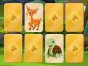 Hayvan Hafıza Kartları