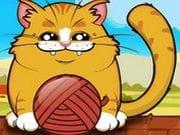 Oyuncu Kedi
