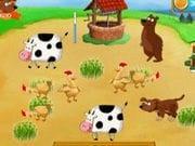 Tavuk Yetiştirme Çiftliği