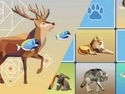 Vahşi Hayvanlar Hafıza Kartları